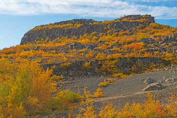 Fall Colors Covering a Volcanic Cliff