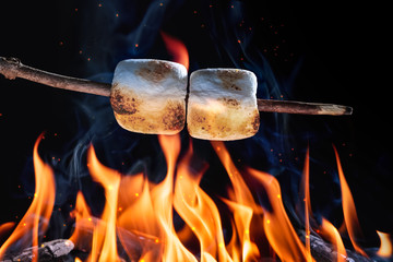 Two Marshmallows On A Stick Roasting Over Campfire On Black Background - Camping/Summer Fun Concept