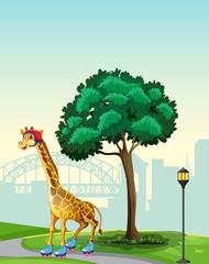 Giraffe in park scene