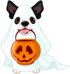 Fotobehang Sprookjeswereld Halloween dog