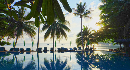 Contour shadow of palm trees at the waterpool on the beach against the sunrise at Phangan island of Thailand