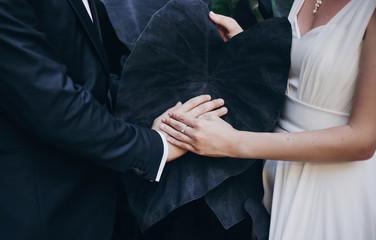 d154bd3ecd9 Stylish bride and groom hands on big black leaf in botanical garden in  Italy, creative