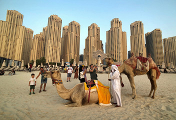 Tourists take photos with camels on the beach at Jumeirah Beach Residence in Dubai
