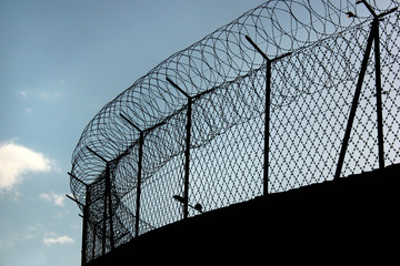 Silhouette of concertina barbed wire on a prison fence