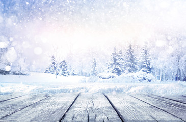 Poster Wit Winter christmas scenic landscape with copy space. Wooden flooring strewn with snow in forest with fir-trees covered with snow on nature.