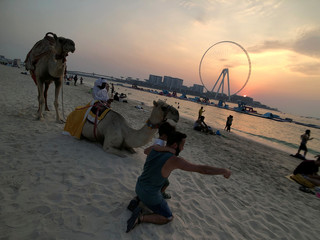 People take photos with camels as they enjoy the sunset on the beach at Jumeirah Beach Residence in Dubai