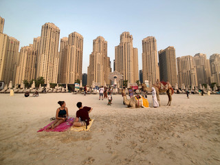 People take photos with camels on the beach at Jumeirah Beach Residence in Dubai