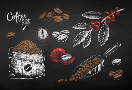 Chalk drawn set of illustrations of coffee beans