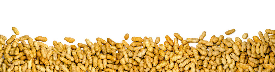 panorama of peanuts on white background, banner isolated