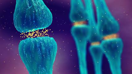 Brain synapses pathology and Neurological disease, Synaptic transmission