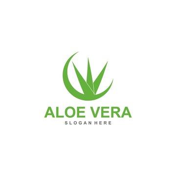 aloe vera logo template, design vector, lotion, treatment