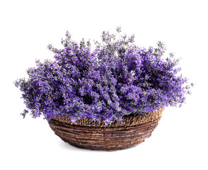 Papiers peints Lavande Fresh lavender flowers in basket on white background