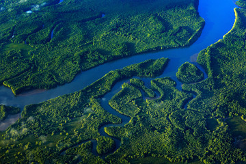 River in tropic Costa Rica, Corcovado NP. Lakes and rivers, view from airplane. Green grass in Central America. Trees with water in rainy season. Photo from air. Wall mural