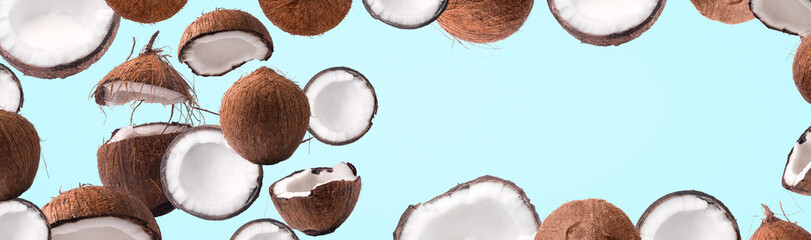 coconut panoramic mock up over blue background