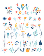 Set of flowers and floral elements. Early spring forest and garden flowers isolated on white vector set.
