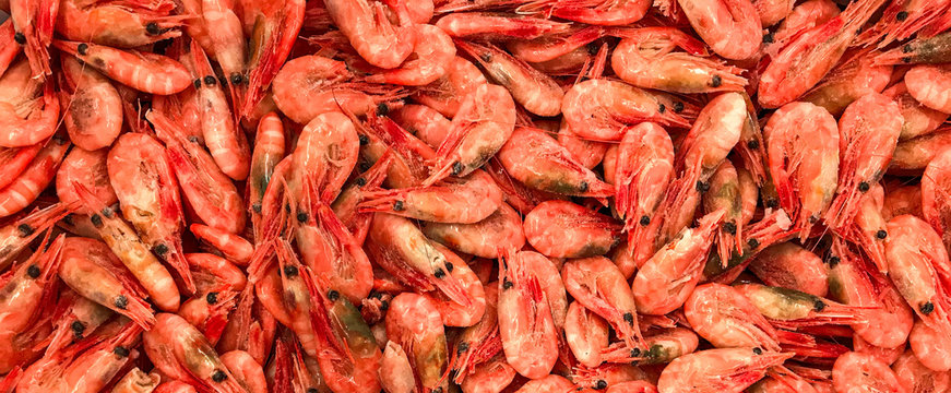 Seefood banner site of frozen shrimp color coral live. Coral shrimps in the fish market.