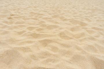 Wall Mural - Yellow beach sand texture.