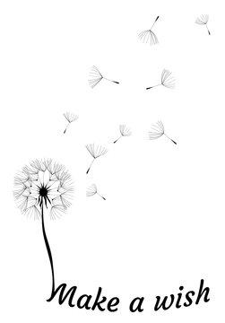 Vector Dandelion Make a Wish