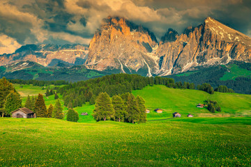 Wall Mural - Green fields with forest and high mountains at sunset, Dolomites