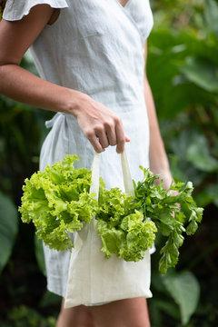 Green lettuce in textile bag.