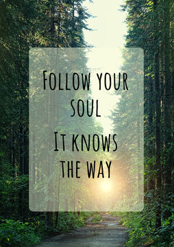 Follow your soul. It knows the way. inspiration quote on abstract forest landscape background. Motivational quote tourism and travel concept with summer nature background. soft selective focus