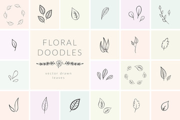 Vector Hand Drawn Doodle florals and plants