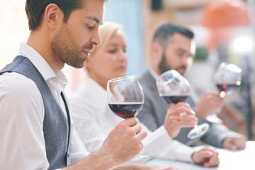 Young elegant winery expert or winemaker evaluating color and smell of wine