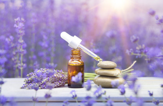 Essential lavender oil in the bottle with dropper on the gray wooden desk. Horizontal close-up.