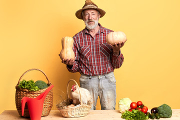 View of successful farmer shows results of hard work at organic field, prouds of his rich havest, brought fresh vegetables and eggs from hen coop. Studio shot, front view, light yellow background.