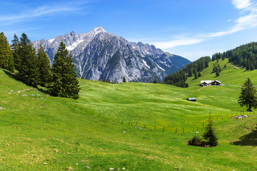 Wall Mural - Summer mountains landscape in Alps. Austria, Gnadenwald, Tyrol Region