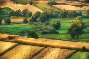 Beautiful summer landscape of Poland - Ponidzie
