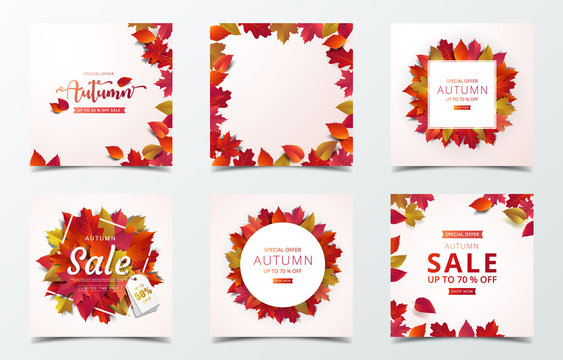 Set of autumn banner design template. Square social media banner. Promotion banner with red maple leaf fall in modern design.