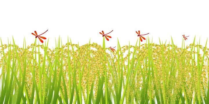 米 稲 秋 背景