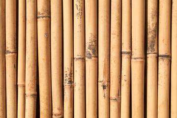 Canneto di bambù - particolare