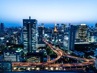 大都会東京の夜景