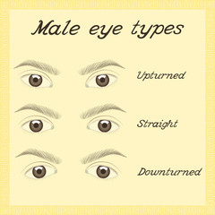 Eye shapes and types. Various male eye types. Vector.