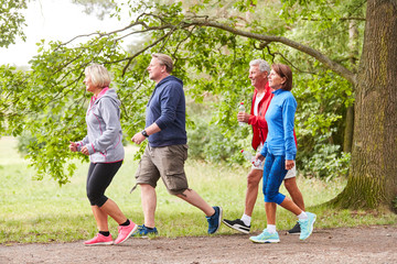 Obraz Senior group walking in nature - fototapety do salonu