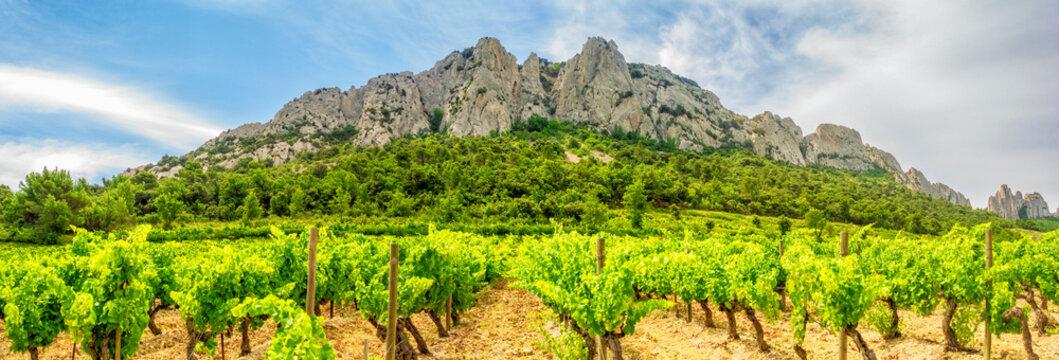 Kulturlandschaft in der Vaucluse: Dentelles de Montmirail