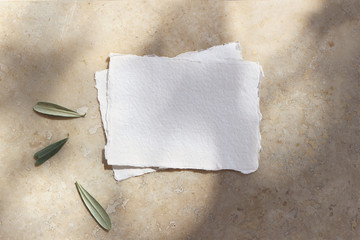 Summer wedding stationery mock-up scene. Blank cotton paper greeting cards, invitations with olive leaves. Elegant marble background in sunlight, shadows overlay. Flat lay, top view.