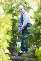Full length portrait of smiling mature man working in garden and looking at camera