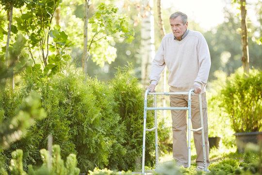 Full length portrait of senior man leaning on walker walking outdoors in sunlit park, copy space