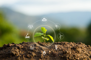 Seedling with bubble of eco icon with green nature background. Clean environment, Solution of Air...