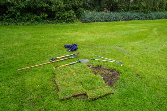 Restoration of spoiled lawn on the lawn in the park, the city of Edinburgh