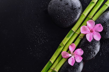 pink flower with black stones and bamboo grove on Wet black background. Spa Concept Wall mural