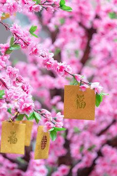 Good luck envelopes for Chinese New Year on Lee Tung Avenue, Wan Chai, Hong Kong Island, Hong Kong
