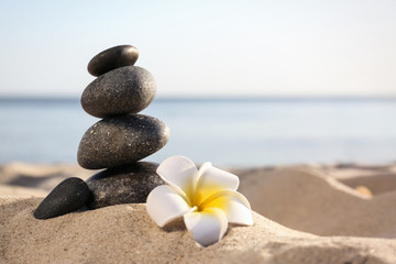 Photo sur Toile Zen pierres a sable Stack of dark stones and beautiful flower on sandy beach near sea, space for text. Zen concept