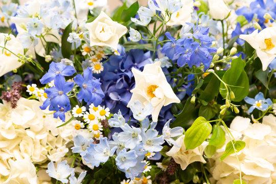 白と緑と青の花