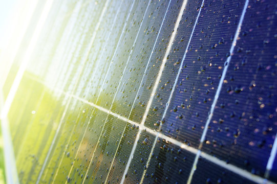 Close-up of dark blue solar panel with water drops and reflection of green trees and house