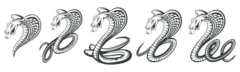 Set of Black King Cobra logo. Snake Tattoo. Indian cobra illustration, drawing. Vector illustration, aggressive and evil spectacled cobra or Naja naja. Vector graphics to design