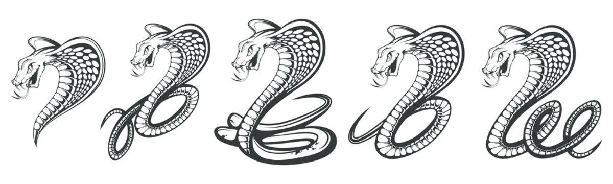 Set of Black King Cobra logo. Snake Tattoo. Indian cobra illustration, drawing. Vector illustration, aggressive and evil spectacled cobra or Naja naja. Vector graphics to design